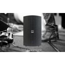AUDIOPHONY ATOM10A Aktiv Lautsprecher mit DSP 300W/600W