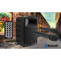 AUDIOPHONY CR12A Mobiles PA-System 120W