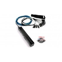 WHIRLWIND Multicore Medusa Mini-12 Serie - Low Profile 12/0/XLR